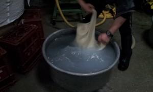 【日本酒蔵】雑賀孫禄(どぶろく)の仕込みの画像