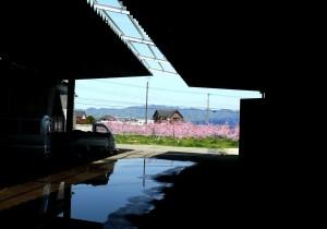 【蔵の移転】桃の町、花盛りの中、工事が本格的になってきました。の画像