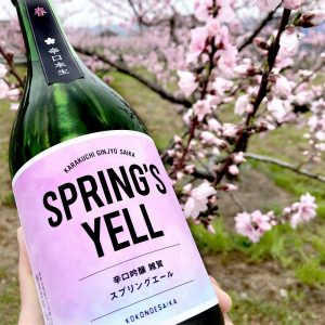 【日本酒】負けない貴方にー「スプリングエール」!渾身の生、辛口吟醸 本生 雑賀の画像