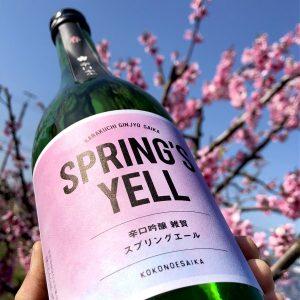 【日本酒】今酒造年、最後の《生》は大辛口「春 辛口吟醸本生 雑賀 スプリングエール」、発売開始です!の画像